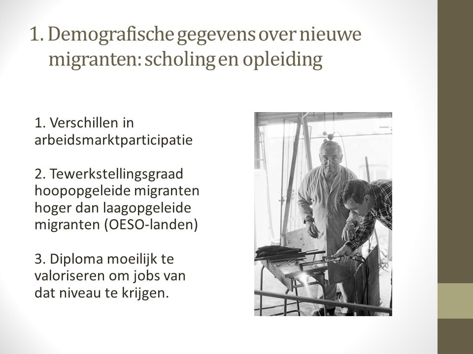 1. Demografische gegevens over nieuwe migranten: scholing en opleiding