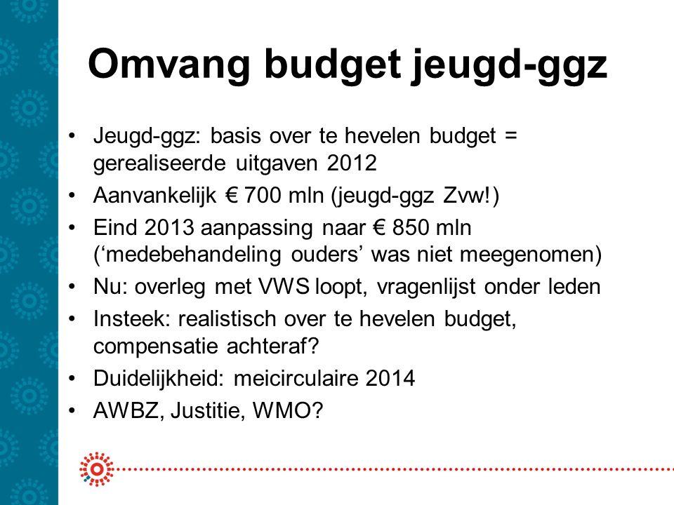 Omvang budget jeugd-ggz
