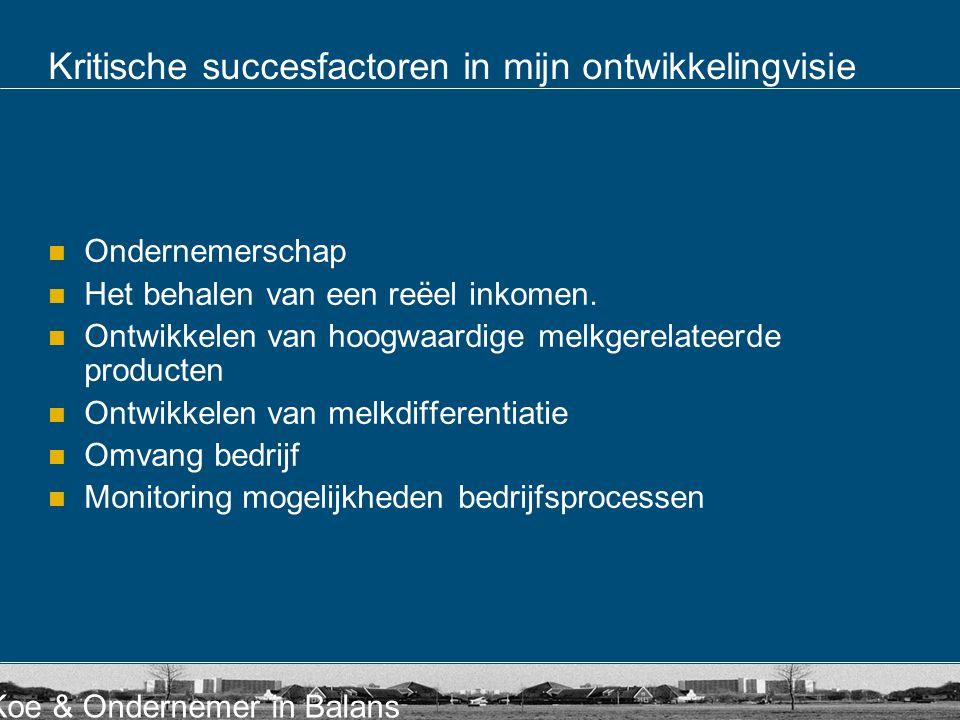 Kritische succesfactoren in mijn ontwikkelingvisie