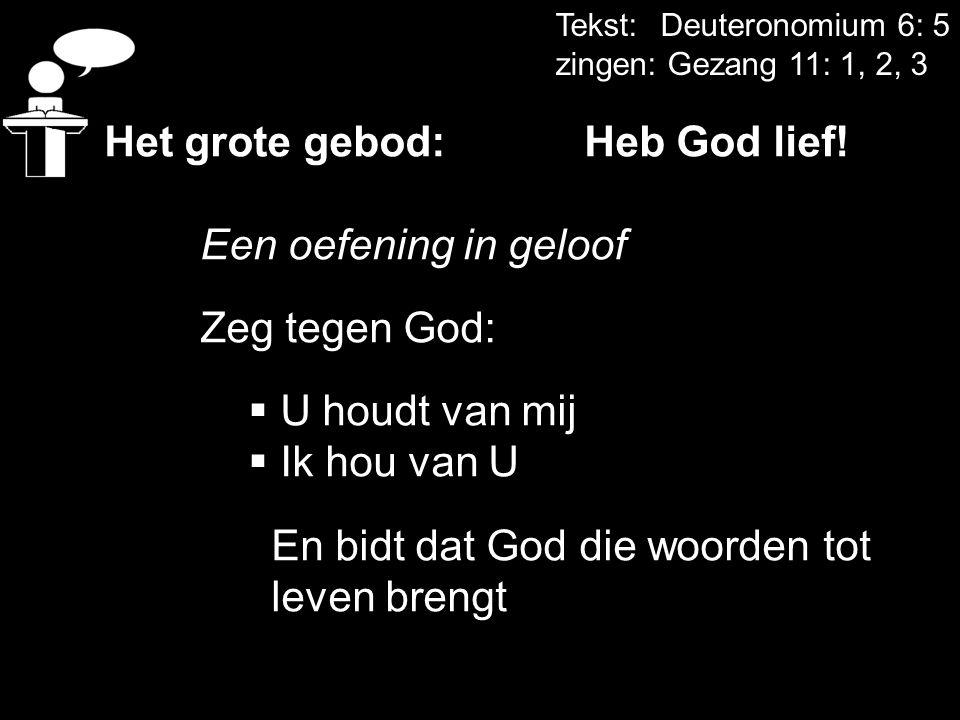 Het grote gebod: Heb God lief! Een oefening in geloof Zeg tegen God: