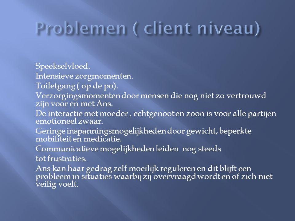 Problemen ( client niveau)
