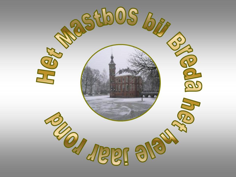 Het Mastbos bij Breda het hele jaar rond