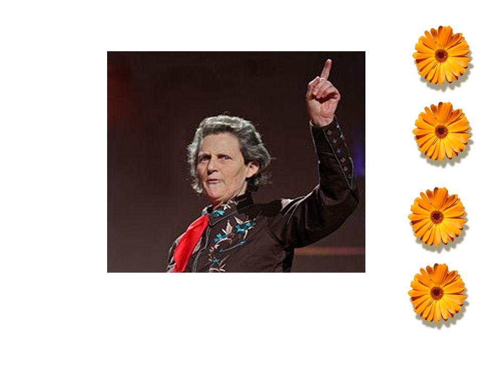 De meest bekende is Temple Grandin, die ondertussen 63 is, en wereldberoemde vrouw met autisme die carrière maakte als top wetenschapper in de humane behandeling van vee in slachtinstallaties én als één van de zeldzame mensen met autisme die toen kon vertellen hoe autisme langs de binnenkant voelt.