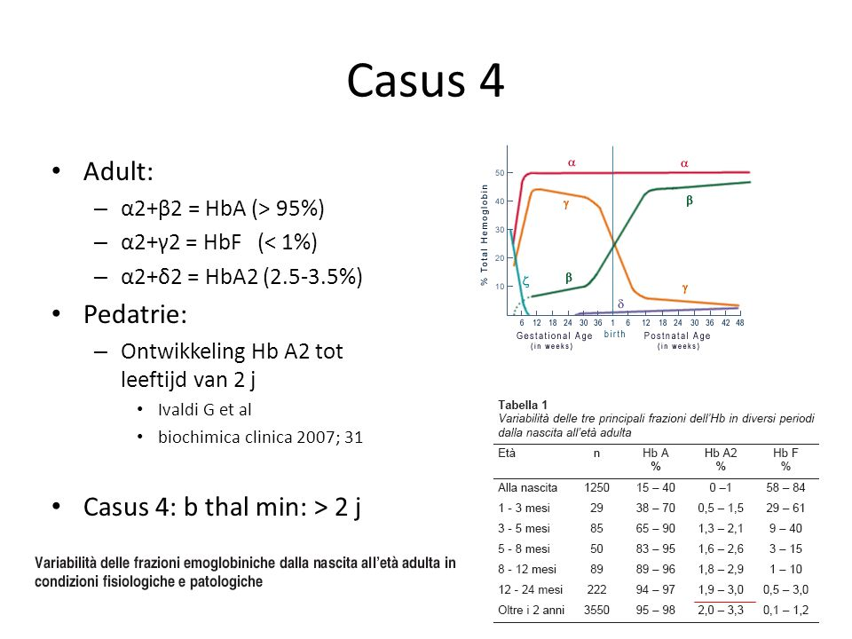 Casus 4 Adult: Pedatrie: Casus 4: b thal min: > 2 j