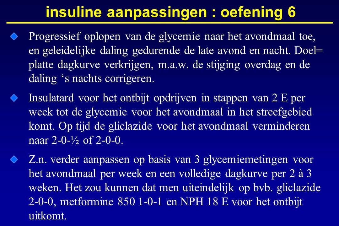 insuline aanpassingen : oefening 6