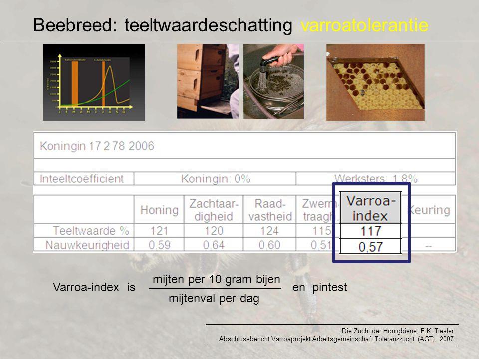 Beebreed: teeltwaardeschatting varroatolerantie