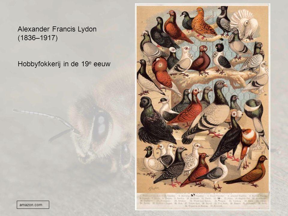 Alexander Francis Lydon (1836–1917)