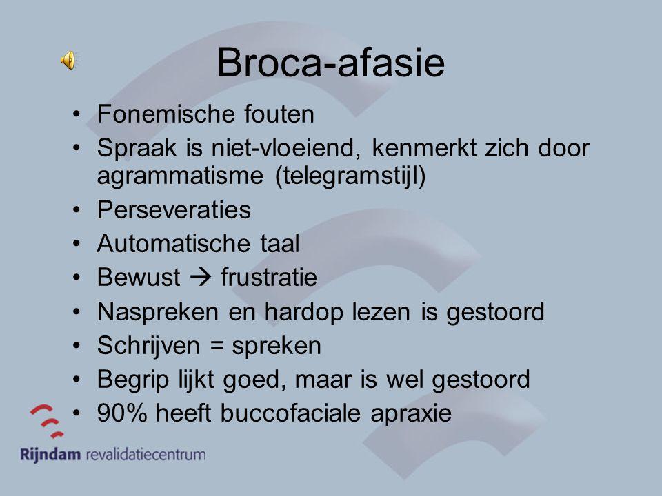 Broca-afasie Fonemische fouten