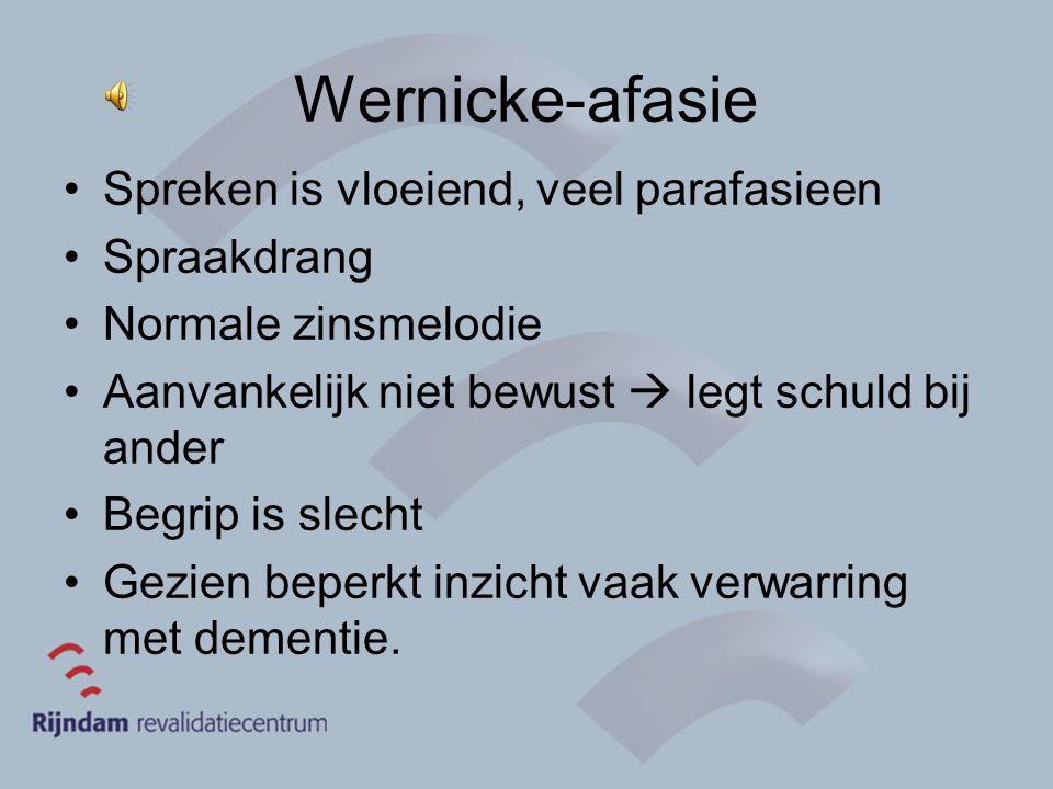Wernicke-afasie Spreken is vloeiend, veel parafasieen Spraakdrang