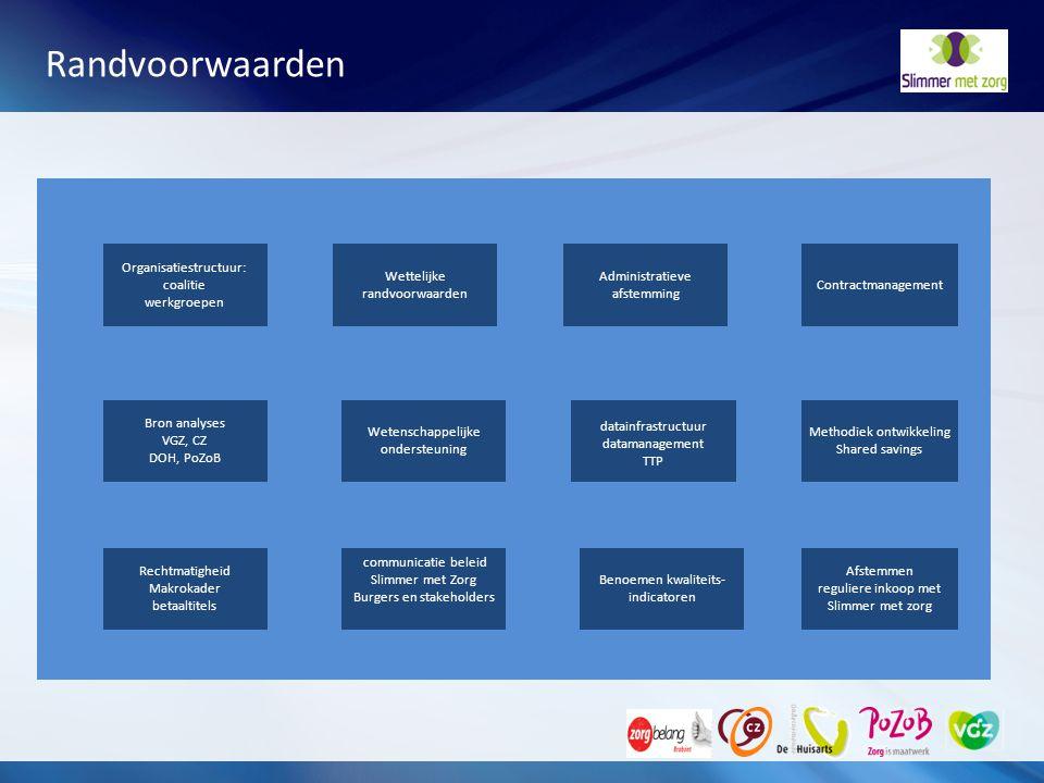 Randvoorwaarden Organisatiestructuur: coalitie werkgroepen