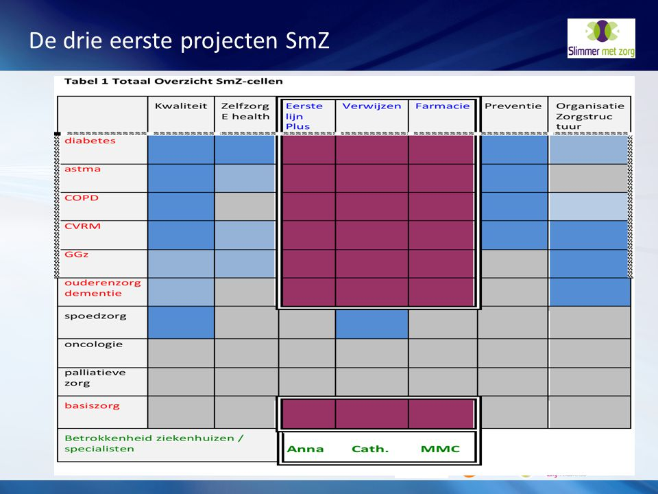 De drie eerste projecten SmZ
