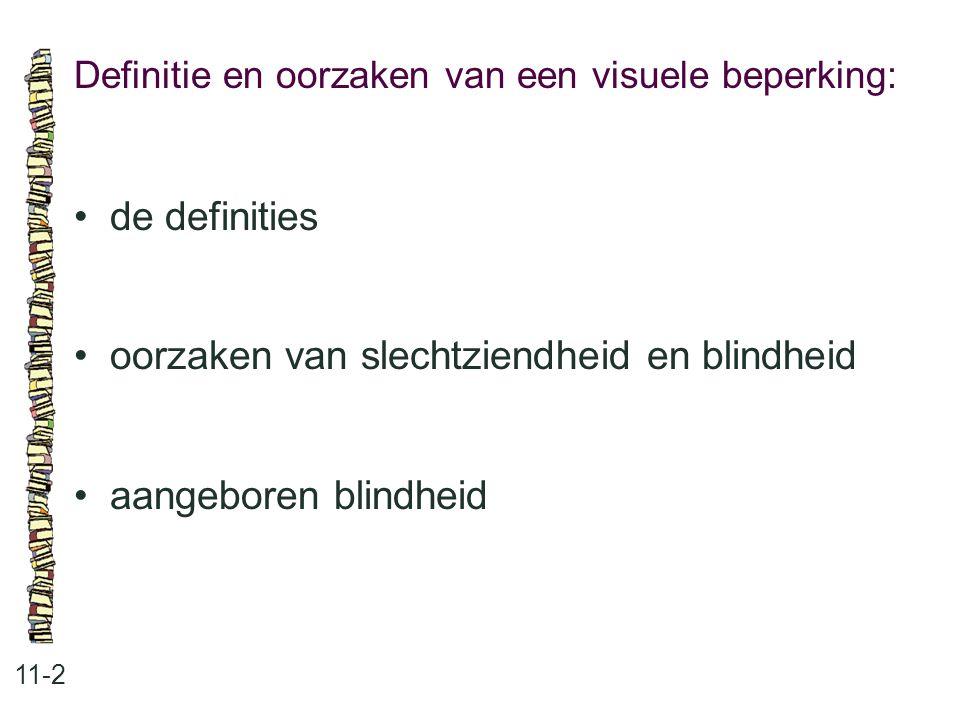 Definitie en oorzaken van een visuele beperking: