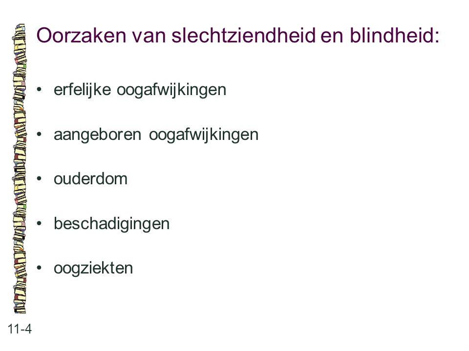 Oorzaken van slechtziendheid en blindheid: