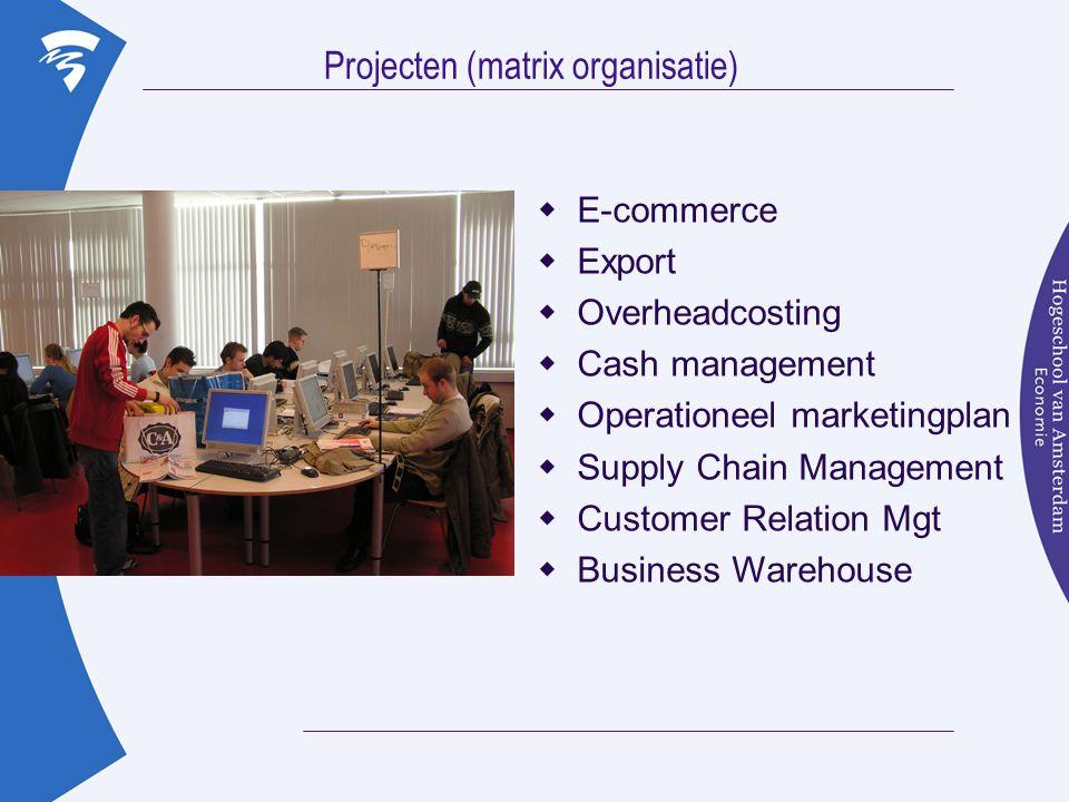 Projecten (matrix organisatie)