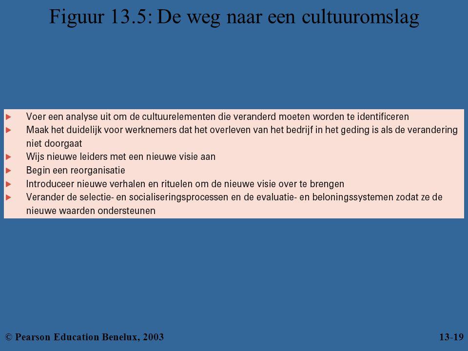Figuur 13.5: De weg naar een cultuuromslag