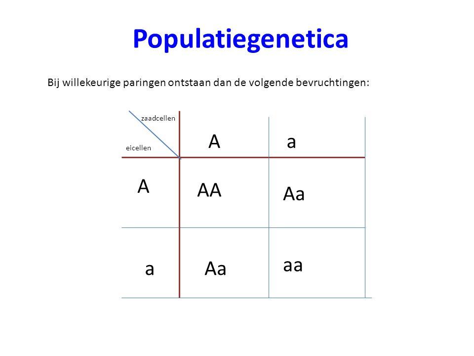 Populatiegenetica A a A AA Aa aa a Aa
