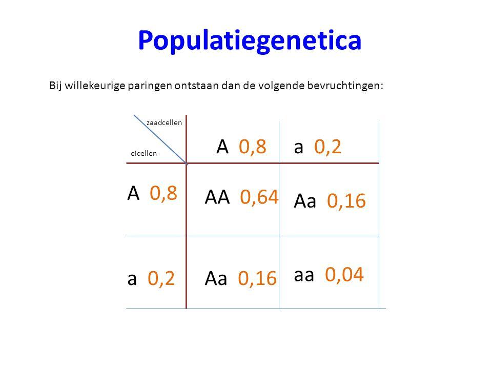 Populatiegenetica A 0,8 a 0,2 A 0,8 AA 0,64 Aa 0,16 aa 0,04 a 0,2