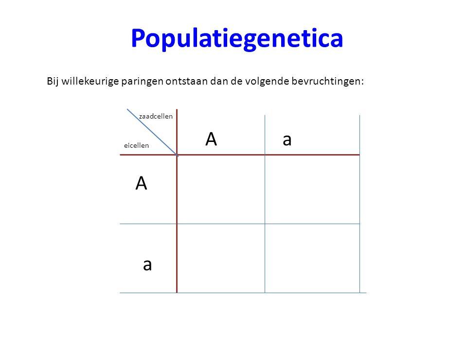 Populatiegenetica A a A a