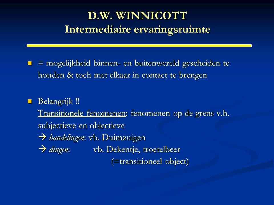 D.W. WINNICOTT Intermediaire ervaringsruimte