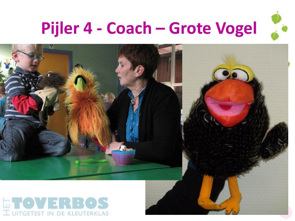 Pijler 4 - Coach – Grote Vogel