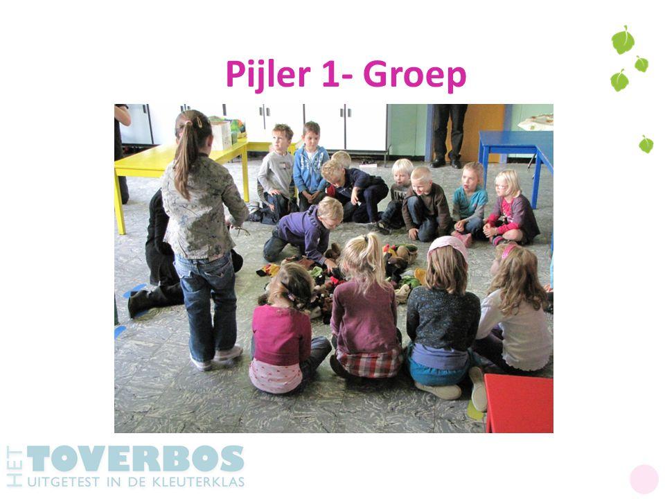 Pijler 1- Groep