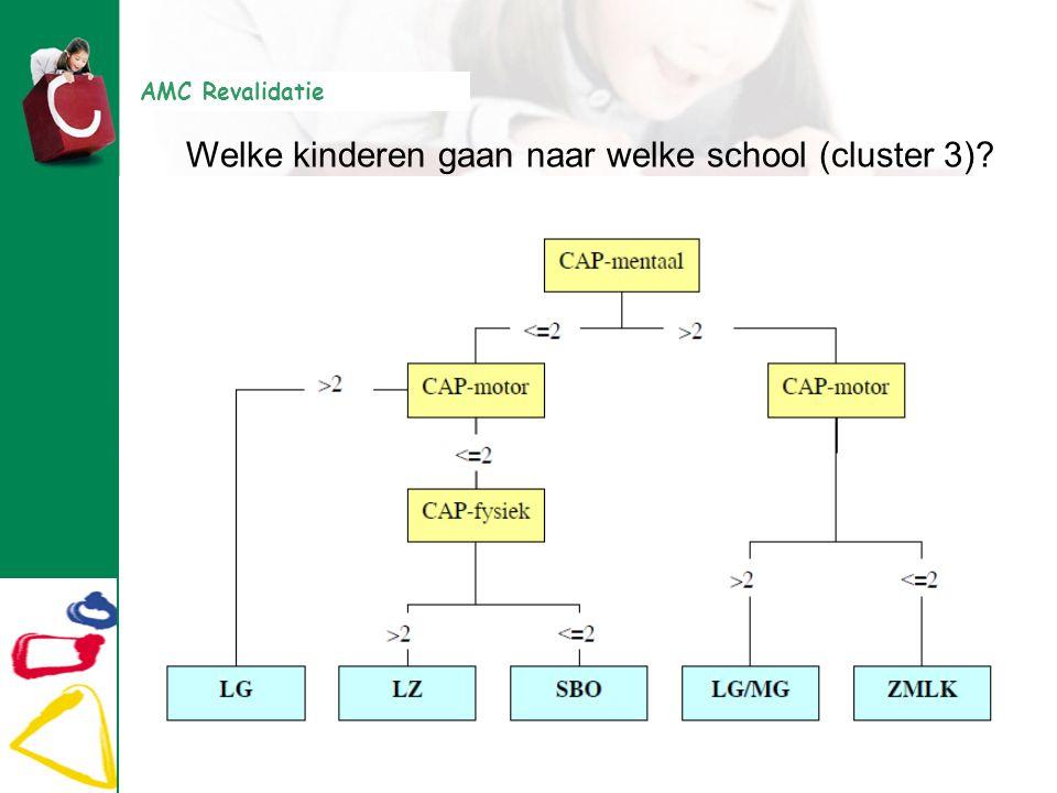 Welke kinderen gaan naar welke school (cluster 3)