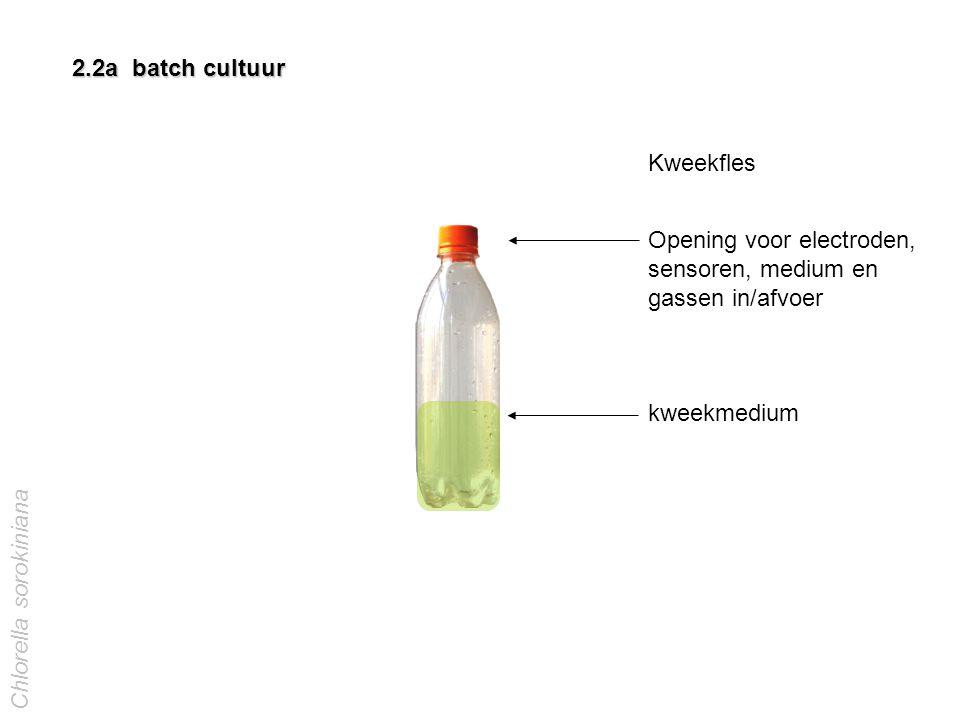 Opening voor electroden, sensoren, medium en gassen in/afvoer
