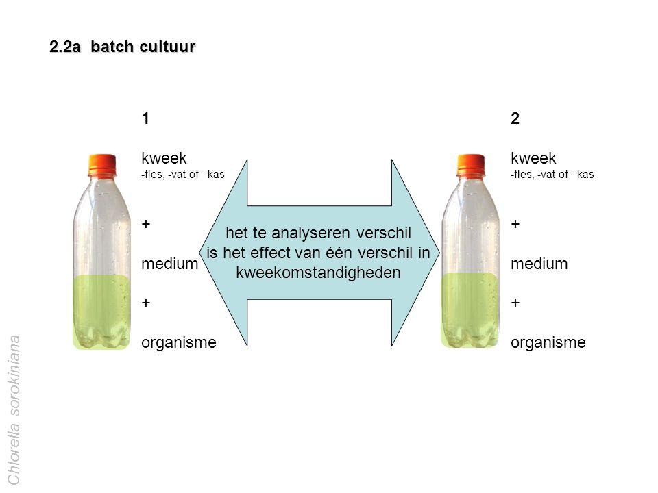 1 kweek -fles, -vat of –kas