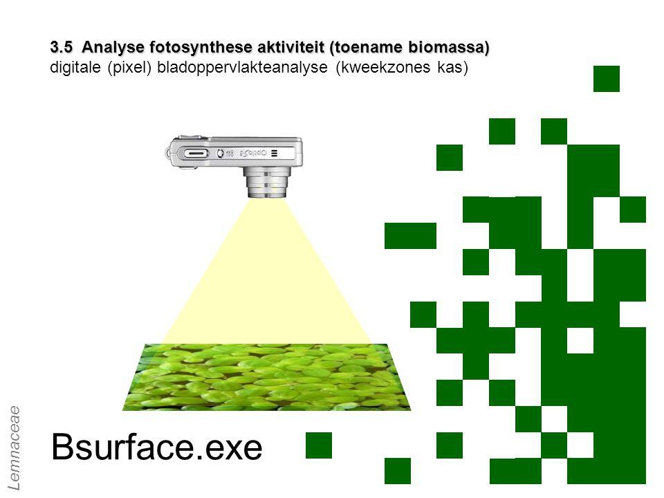 3.5 Analyse fotosynthese aktiviteit (toename biomassa) digitale (pixel) bladoppervlakteanalyse (kweekzones kas)
