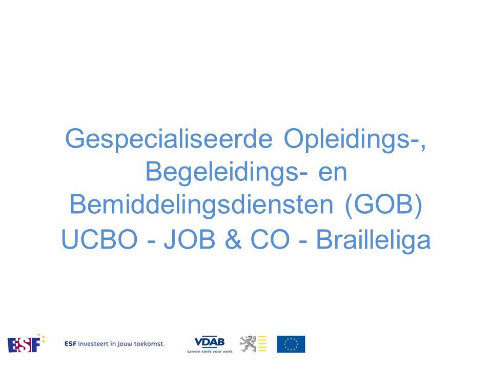 Gespecialiseerde Opleidings-, Begeleidings- en Bemiddelingsdiensten (GOB) UCBO - JOB & CO - Brailleliga