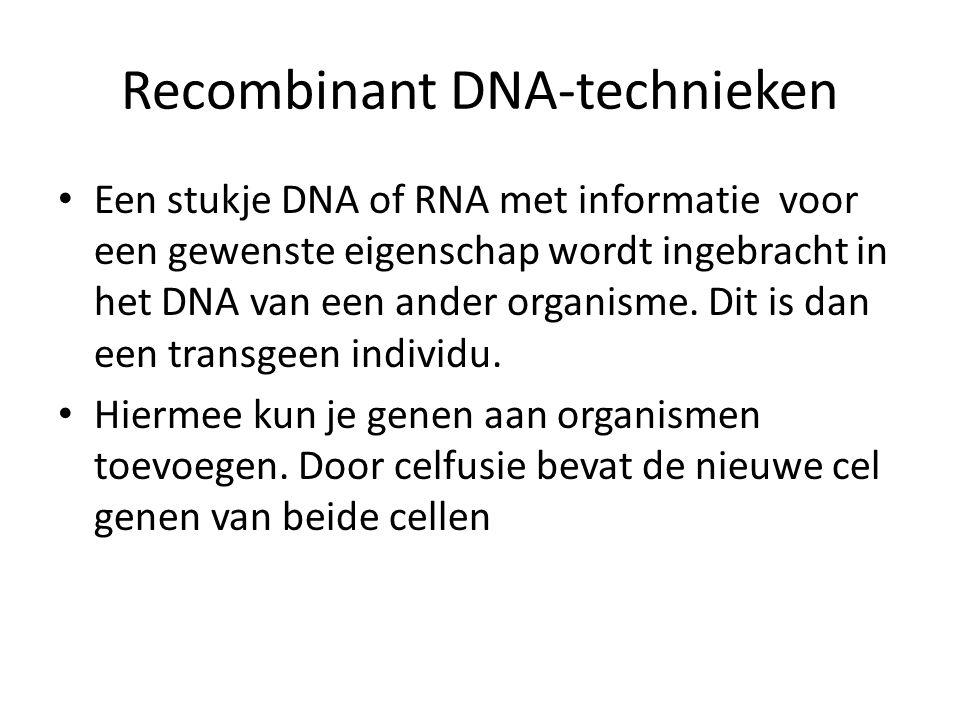 Recombinant DNA-technieken