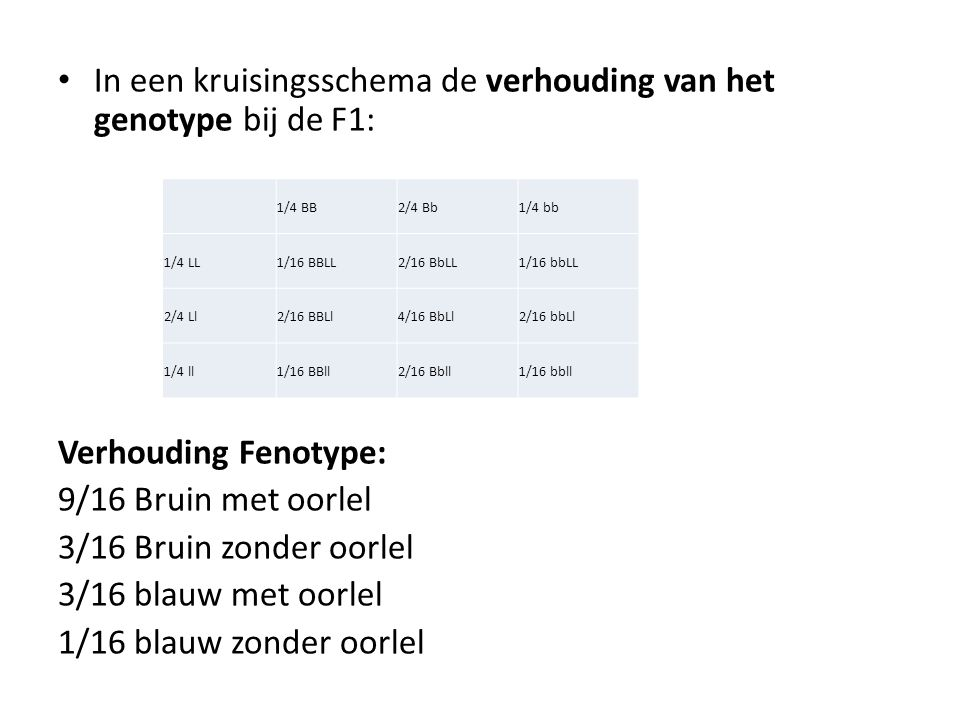 In een kruisingsschema de verhouding van het genotype bij de F1: