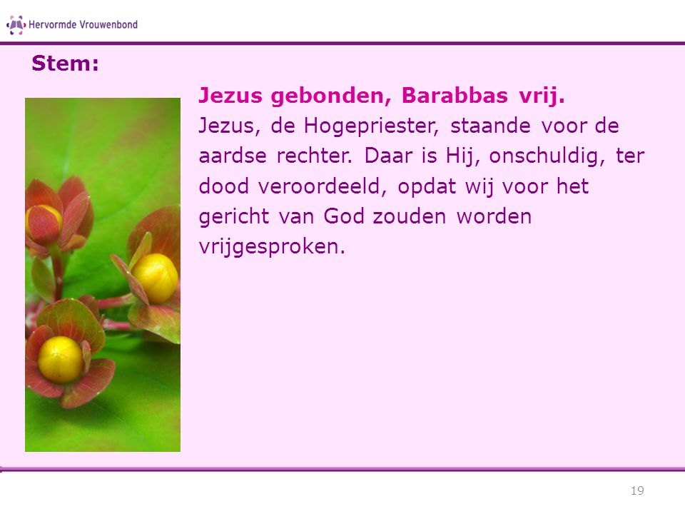 Stem: Jezus gebonden, Barabbas vrij.