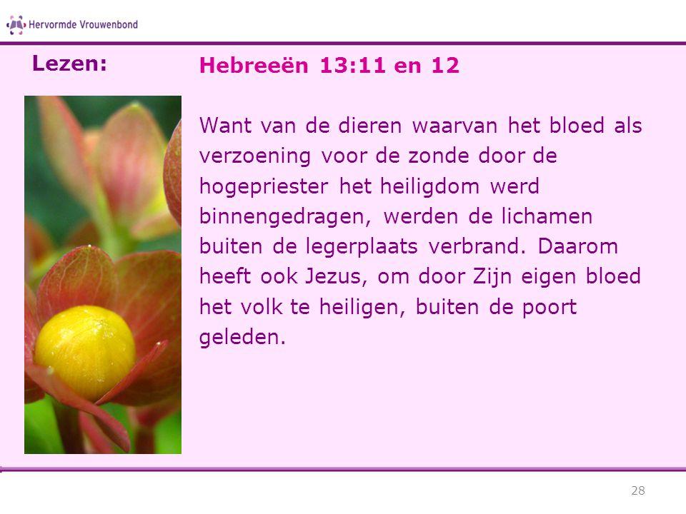 Lezen: Hebreeën 13:11 en 12.