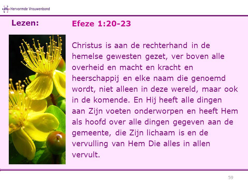 Lezen: Efeze 1:20-23.