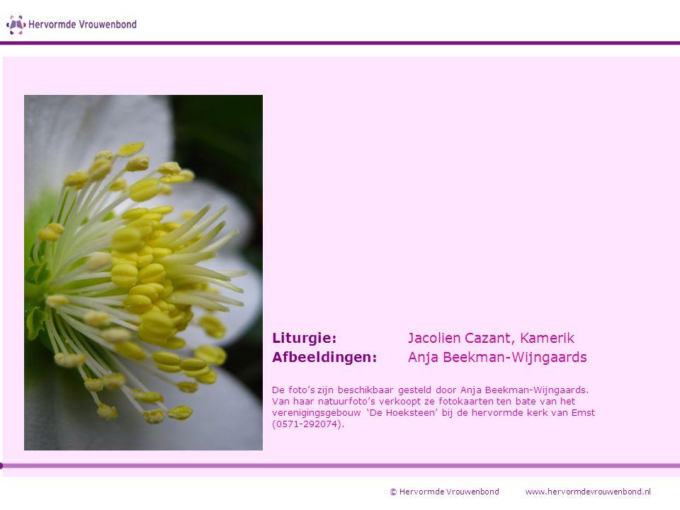 Liturgie: Jacolien Cazant, Kamerik