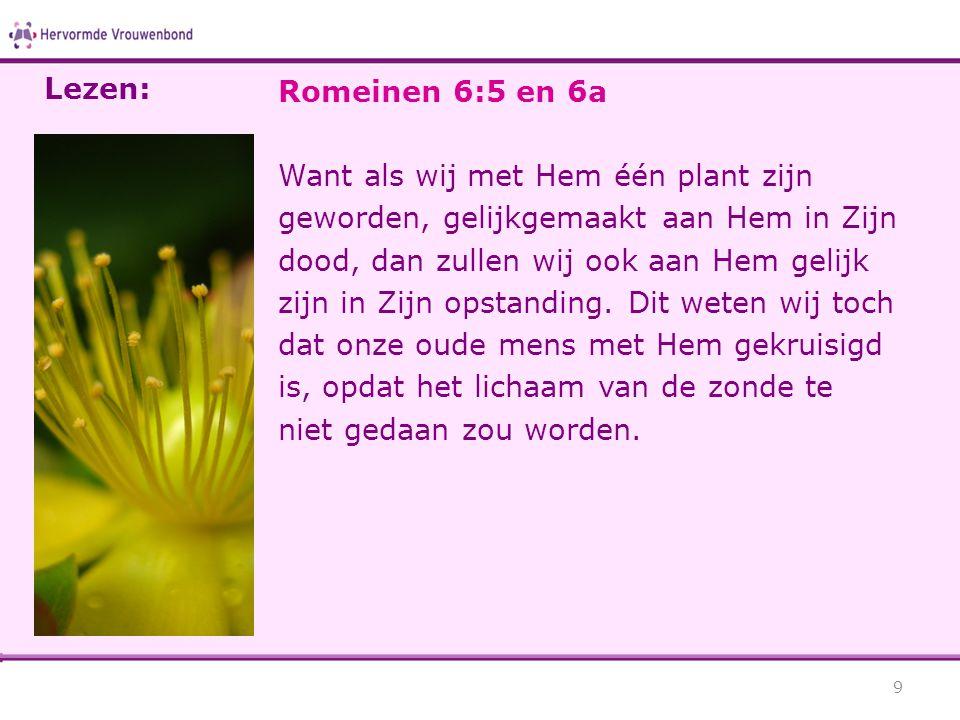 Lezen: Romeinen 6:5 en 6a.