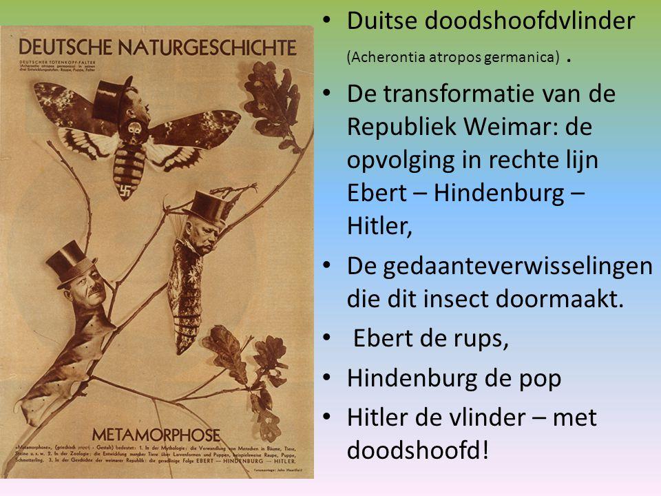 Duitse doodshoofdvlinder (Acherontia atropos germanica) .