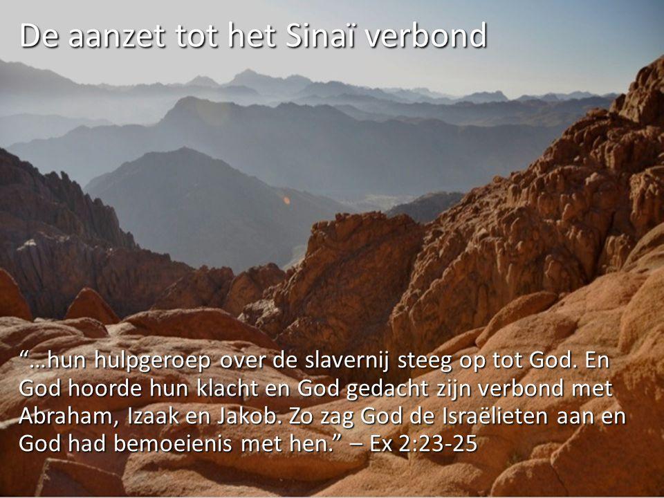 De aanzet tot het Sinaï verbond