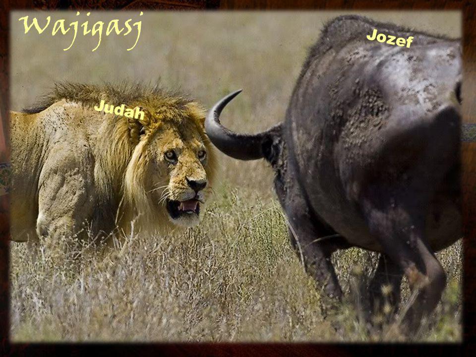 Wajigasj Judah Jozef