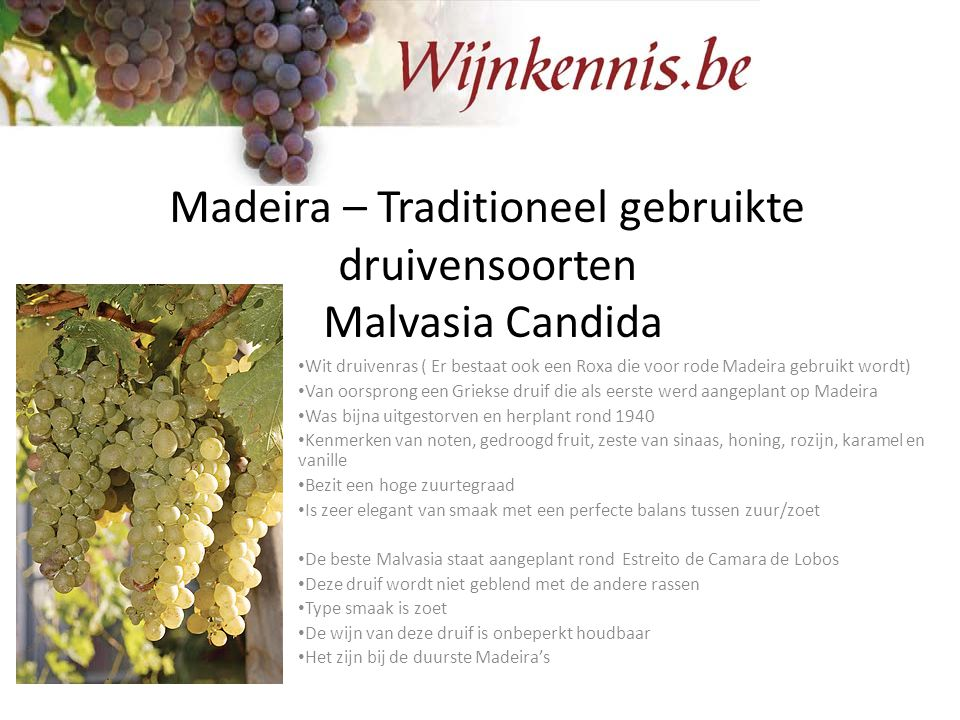 Madeira – Traditioneel gebruikte druivensoorten Malvasia Candida