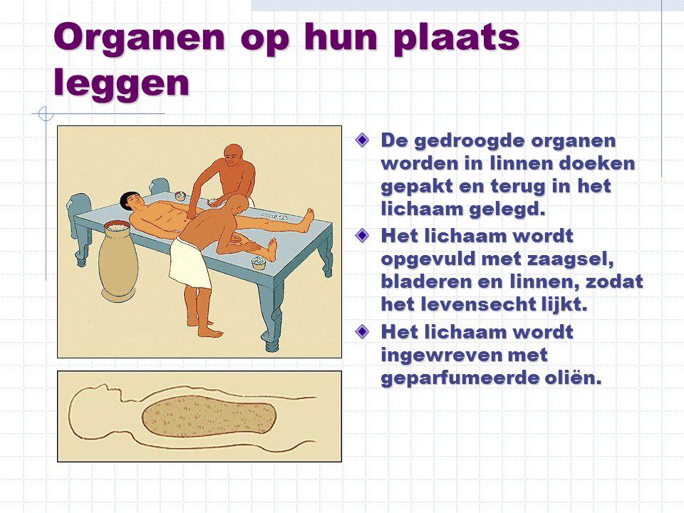 Organen op hun plaats leggen