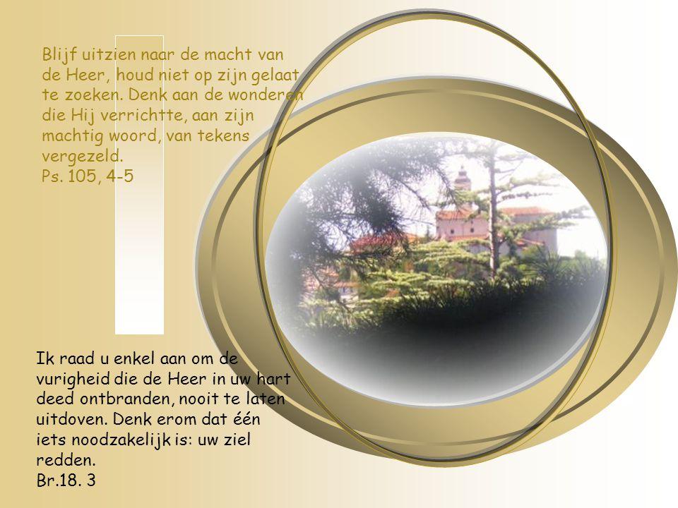 Blijf uitzien naar de macht van de Heer, houd niet op zijn gelaat te zoeken. Denk aan de wonderen die Hij verrichtte, aan zijn machtig woord, van tekens vergezeld. Ps. 105, 4-5