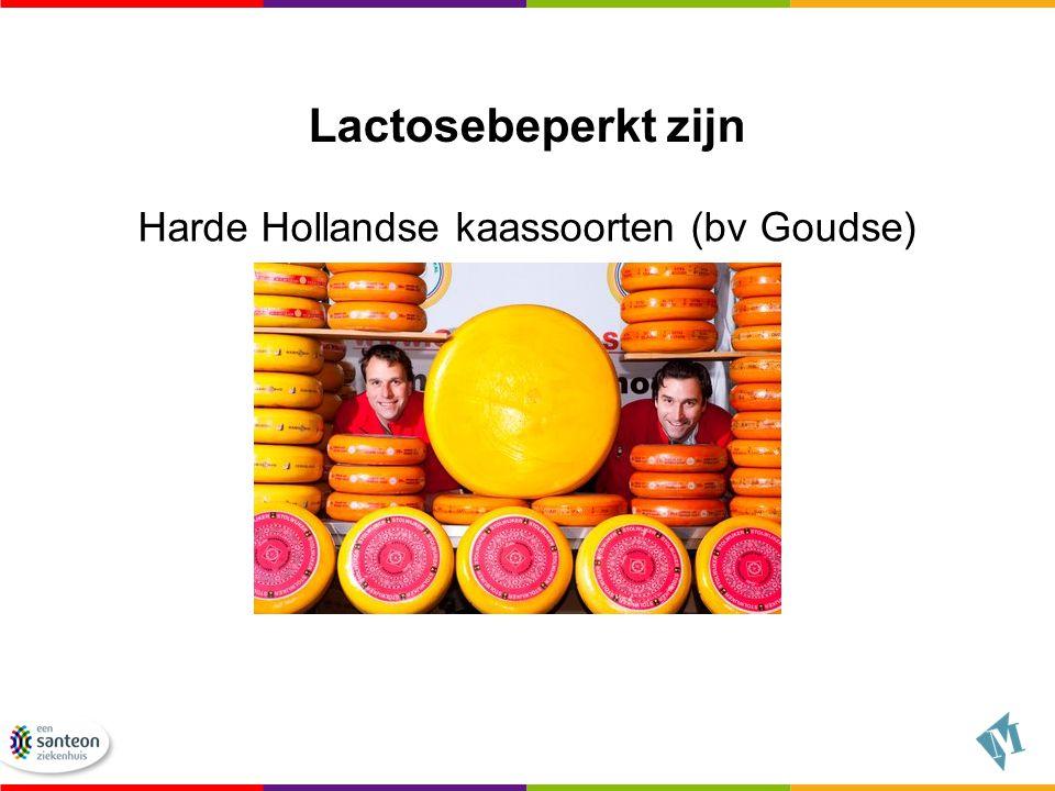Harde Hollandse kaassoorten (bv Goudse)