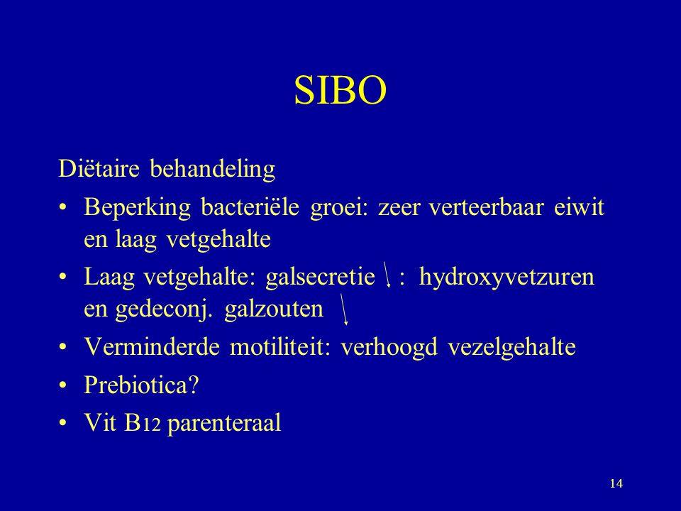SIBO Diëtaire behandeling