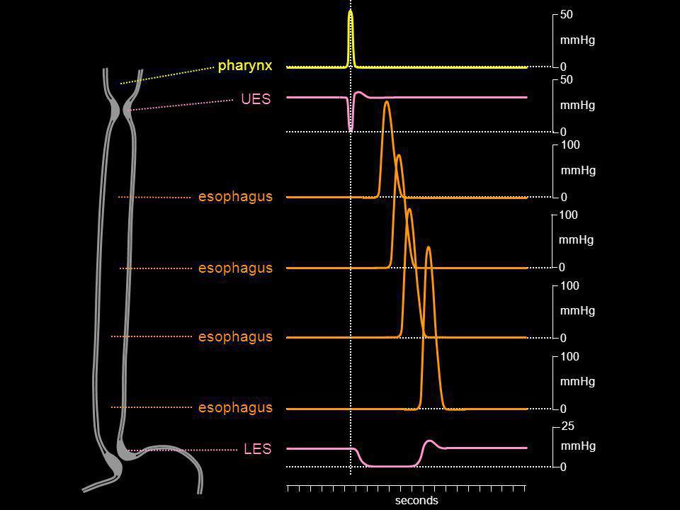 pharynx UES esophagus esophagus esophagus esophagus LES 50 mmHg 100