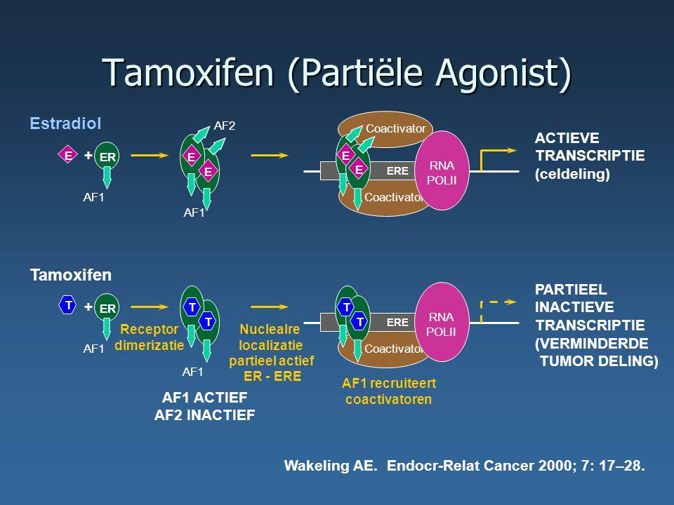 Tamoxifen (Partiële Agonist)