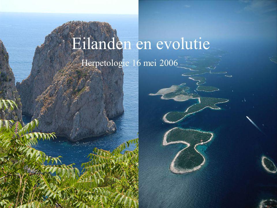 Eilanden en evolutie Herpetologie 16 mei 2006