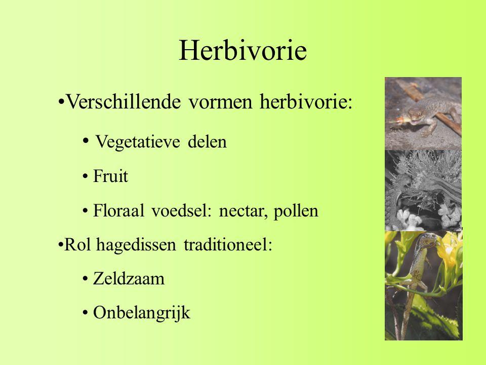 Herbivorie Verschillende vormen herbivorie: Vegetatieve delen Fruit
