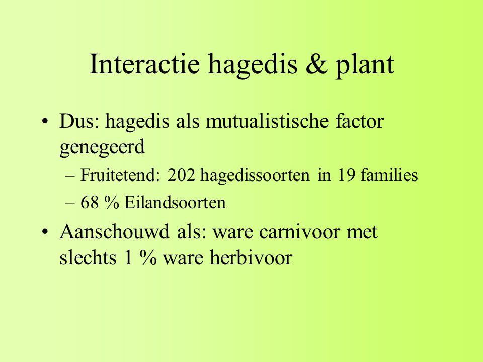 Interactie hagedis & plant